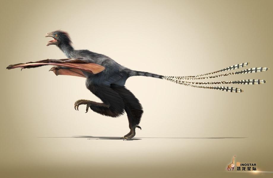 dinosaur Yi qi 8