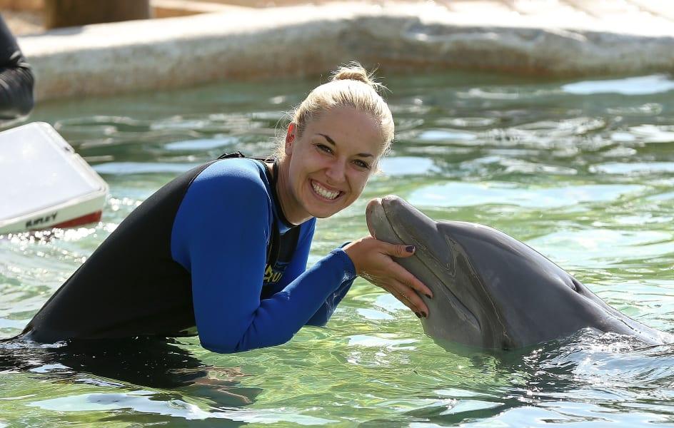 sabine lisicki dolphin