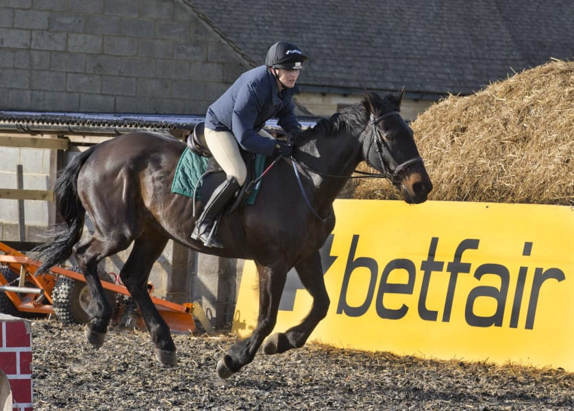 pendleton horse jump betfair