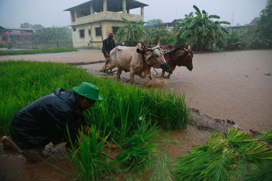 india heavy rain july 05
