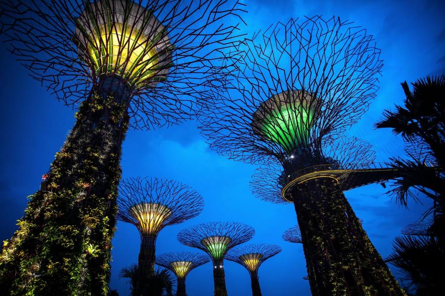 Singapore supertree grove FILE