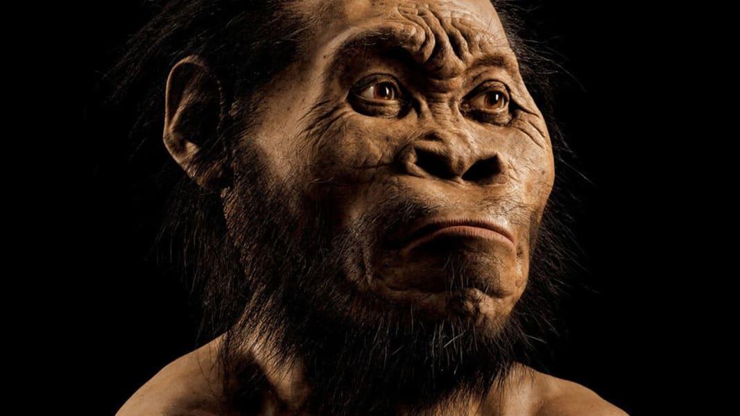 RESTRICTED Homo Naledi Nat Geo 6