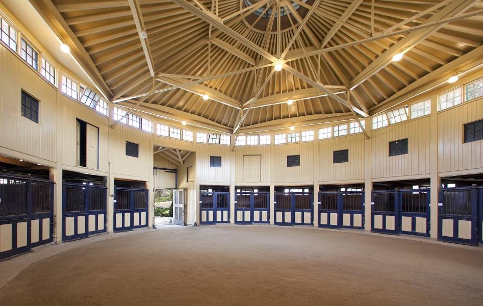 san carlos ranch equestrian