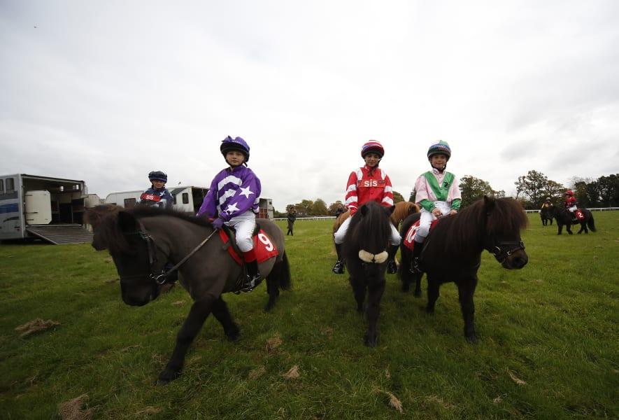 Shetland Pony Gold Cup 2