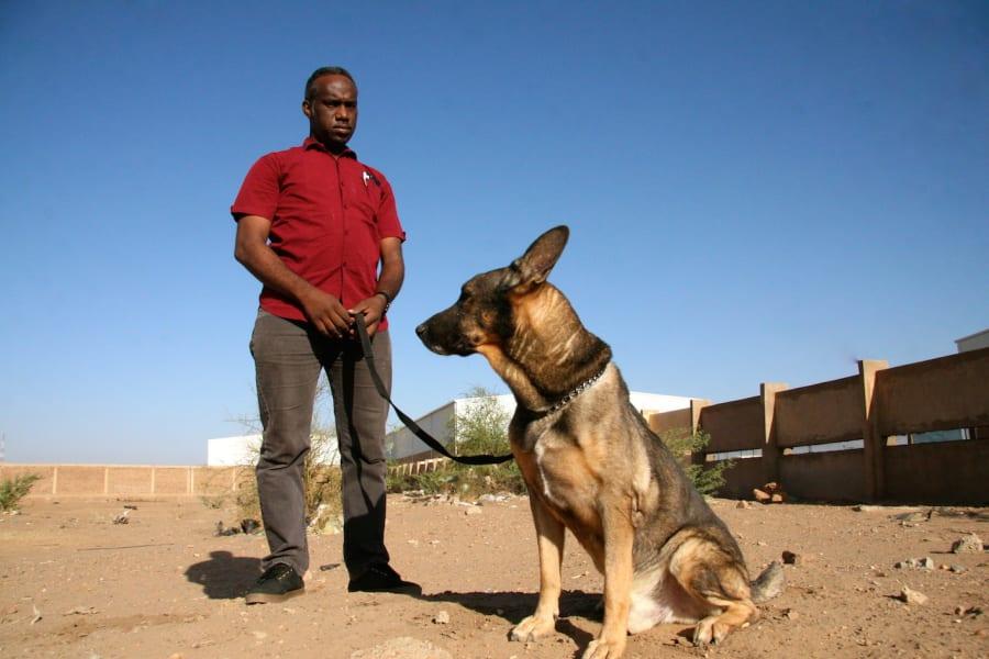 sudan landmine dogs 1