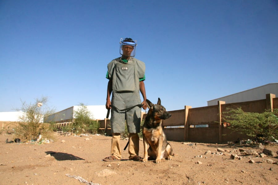 sudan landmine dogs 4