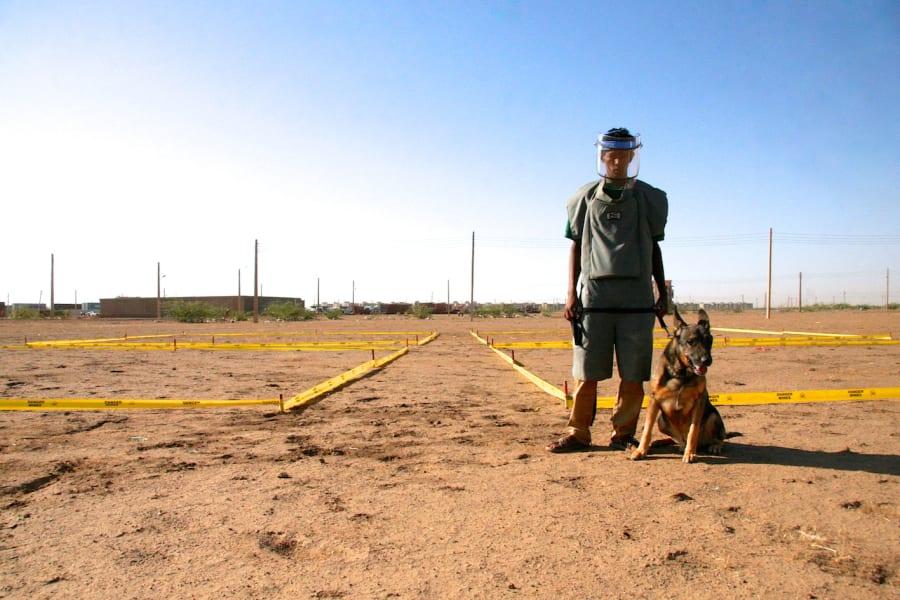 sudan landmine dogs 5
