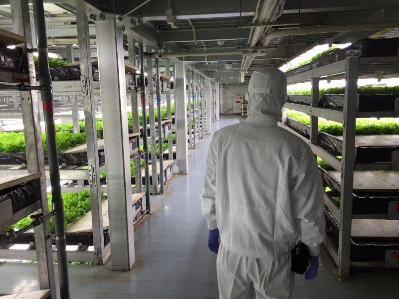 Kyoto Spread vertical farm 2