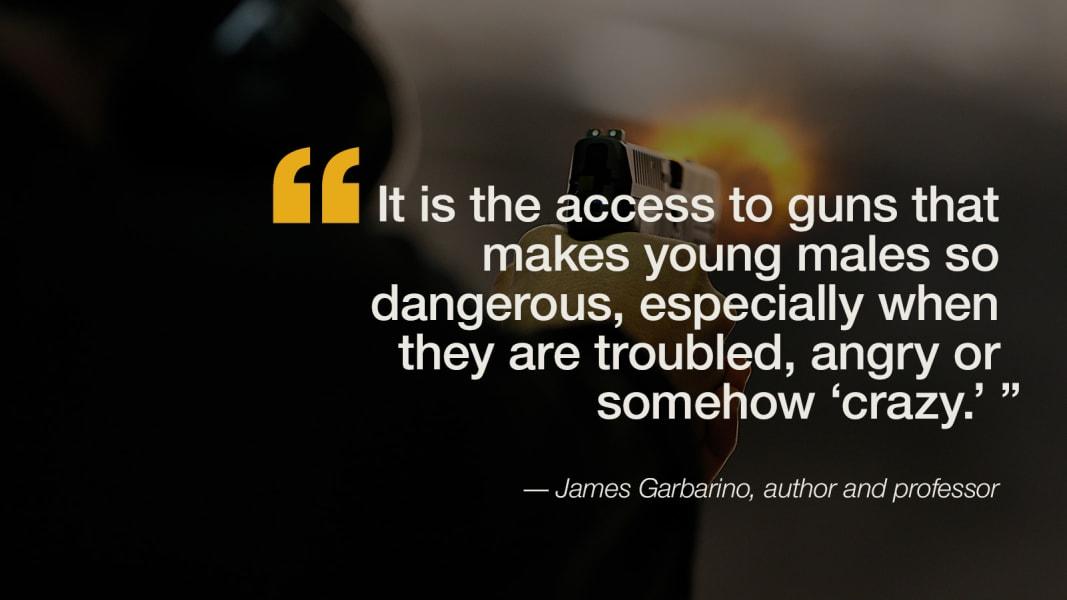 quote-guns-solutions-garabino