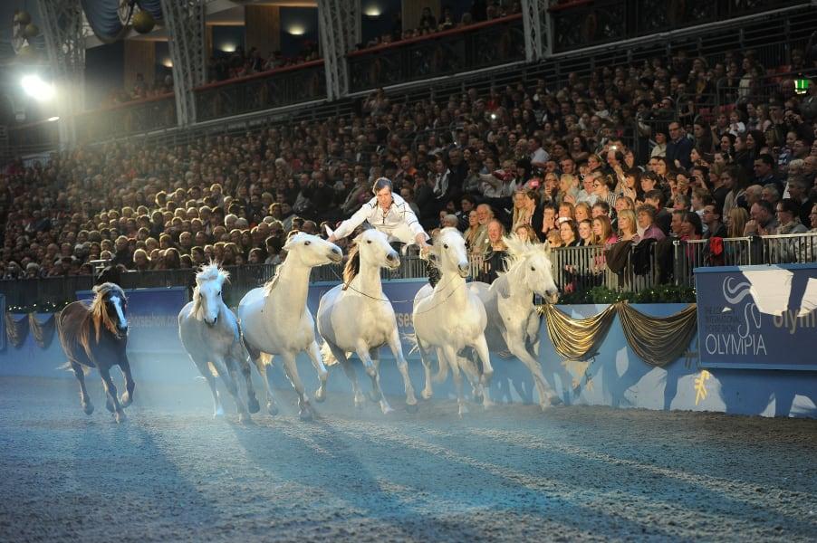 pignon olympia 2012