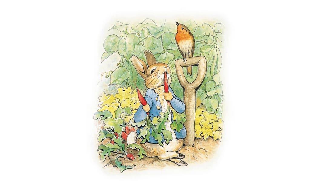 Peter Rabbit illustration