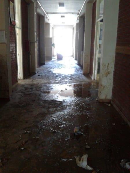 djokovic school flood 3