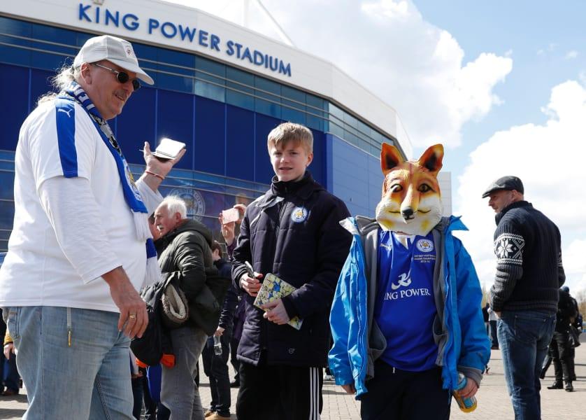fox fan