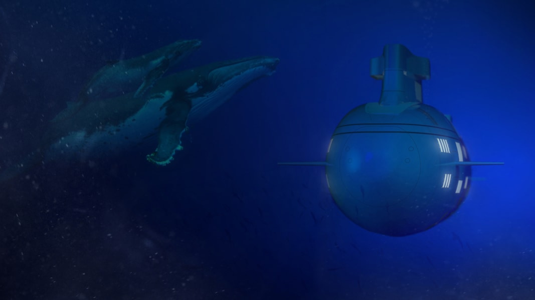 Migaloo Private Submersible Yacht 1