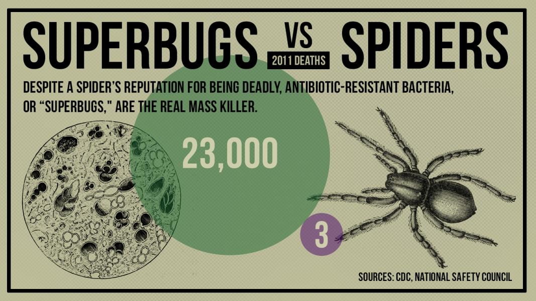 gfx-death-superbug_vs_spider