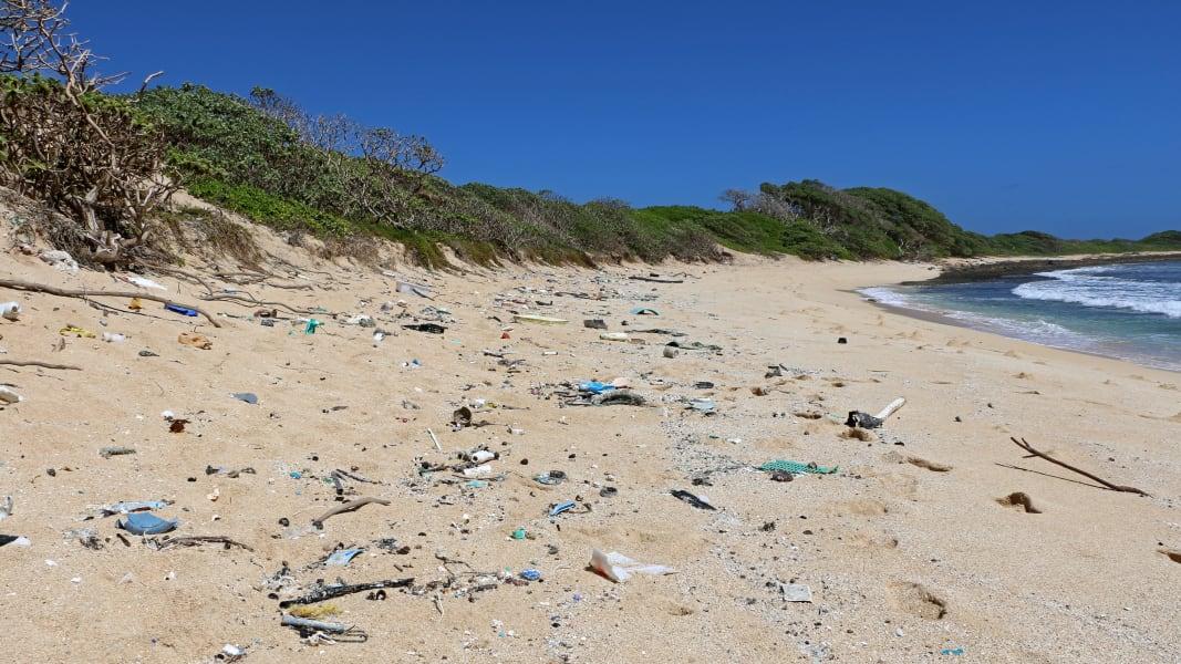 Hawaii trash problem irpt