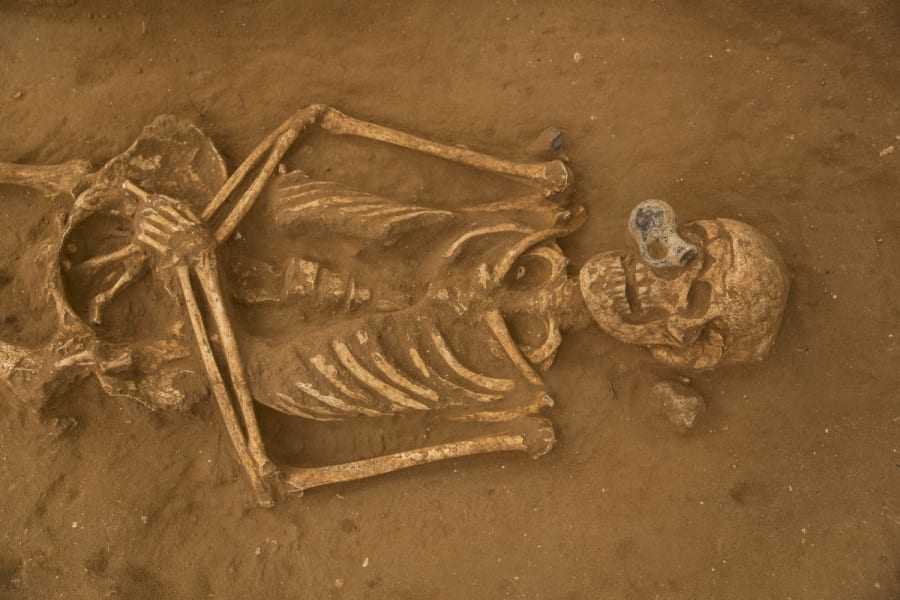 Philistine cemetery 7