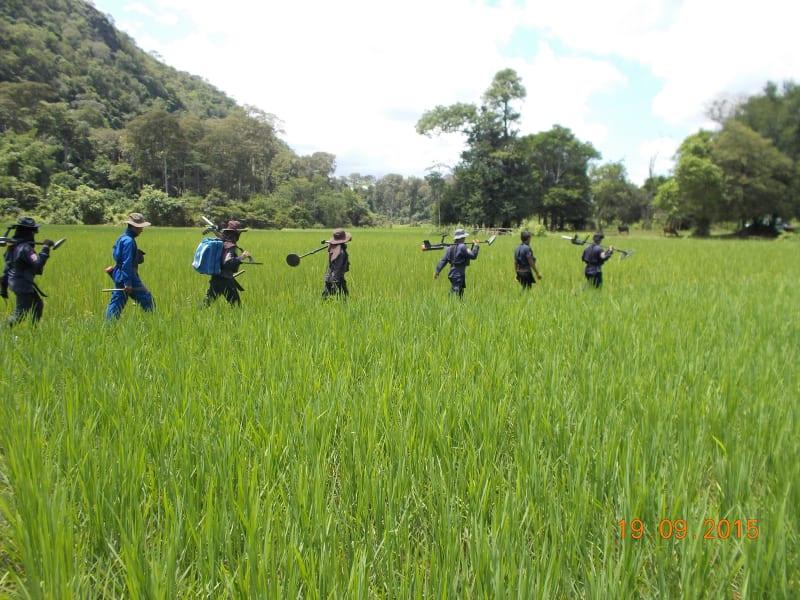 Laos Halo 5