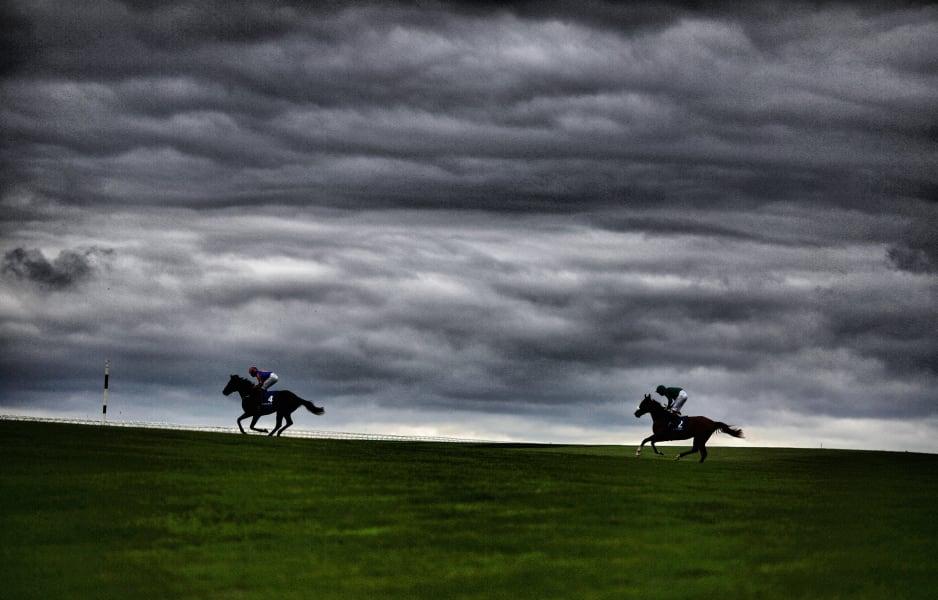 Curragh racecourse runners