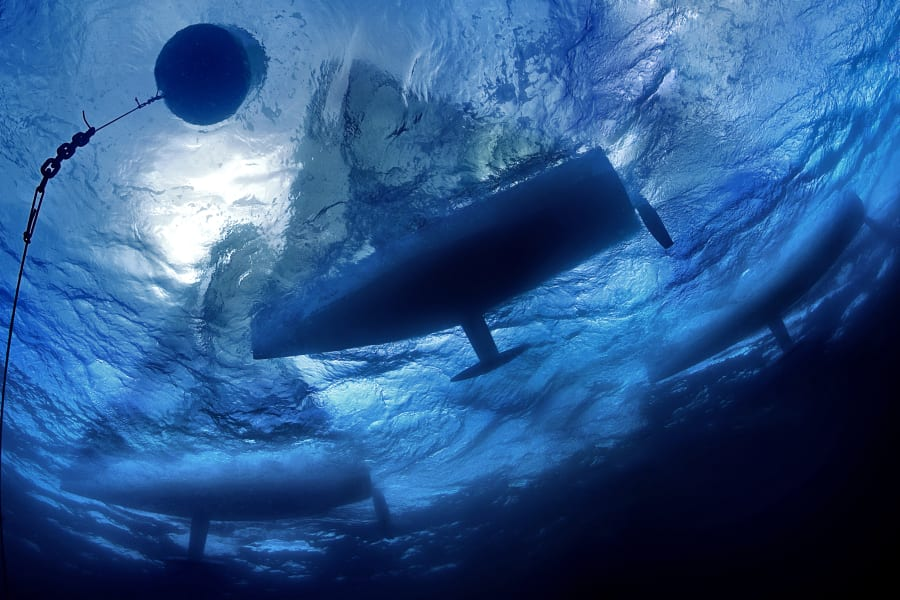 Carlo Borlenghi blue ocean