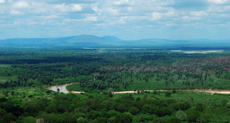 rufij river selous game reserve