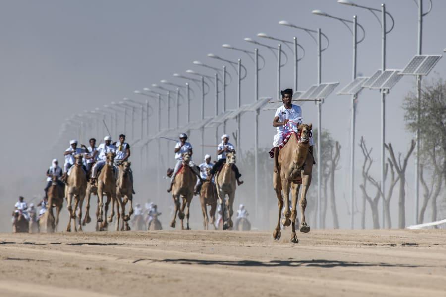 fazza championships camel races 4