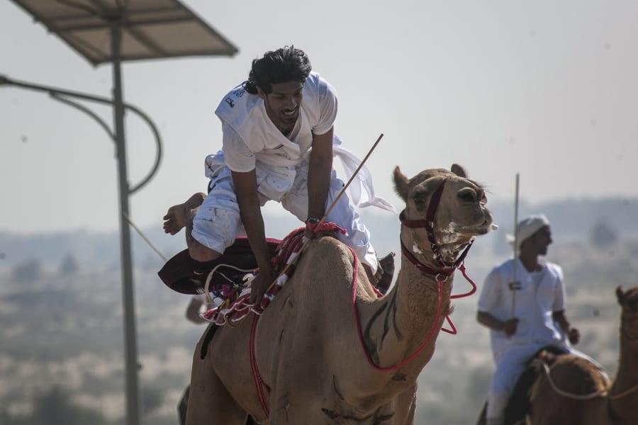 fazza championships camel races 7