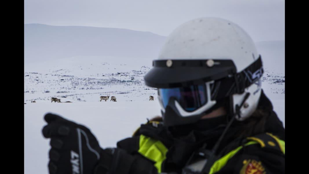 10 cnnphotos Reindeer Police RESTRICTED