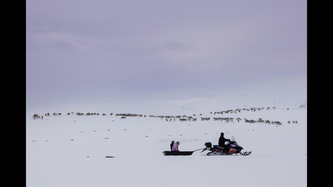 13 cnnphotos Reindeer Police RESTRICTED