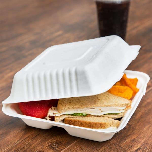 compostable bagasse takeaway box