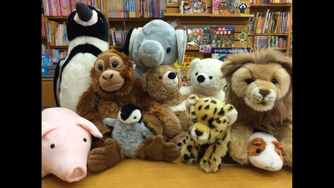 05 stuffed animals reading