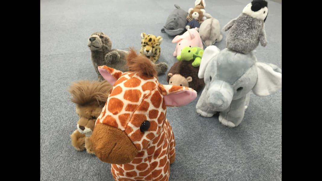 08 stuffed animals reading