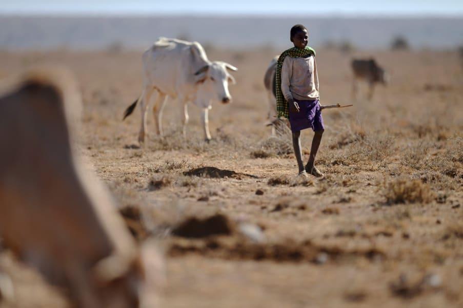 Young Kenyan Herdsman drought
