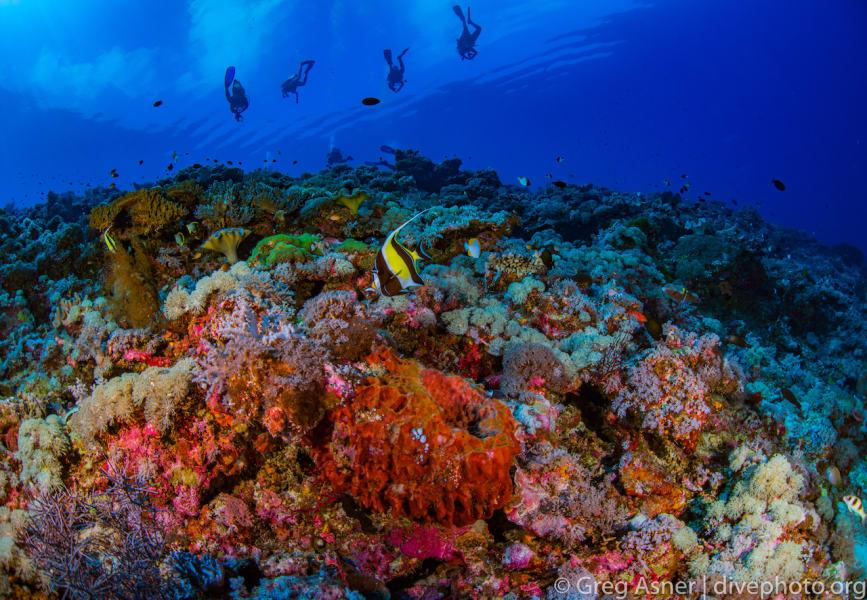 South China Sea Spratlys underwater 5