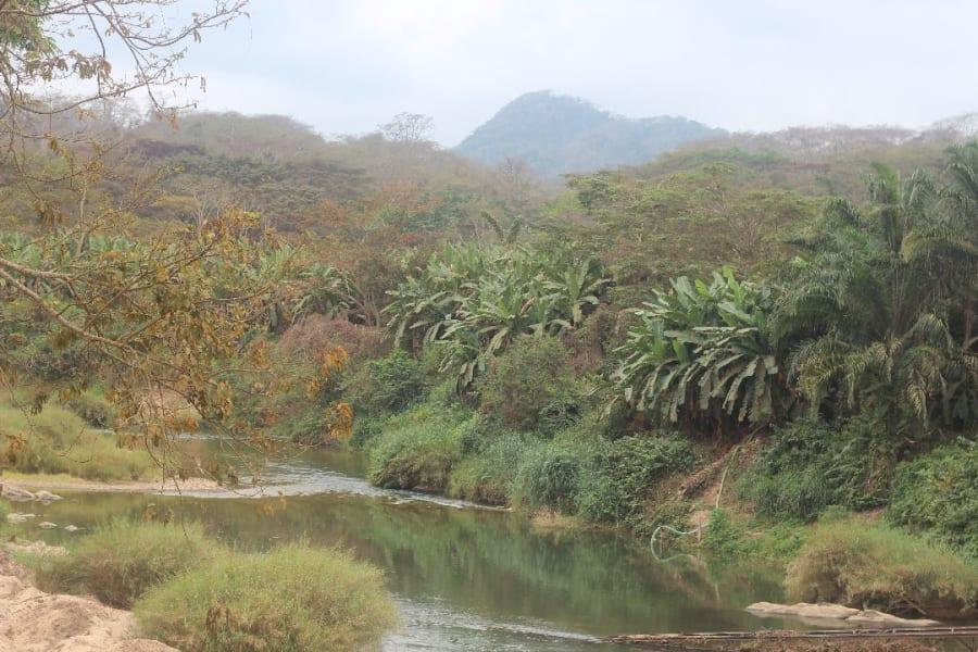 Somewhere in the Angolan Escarpment_Simon Bearder