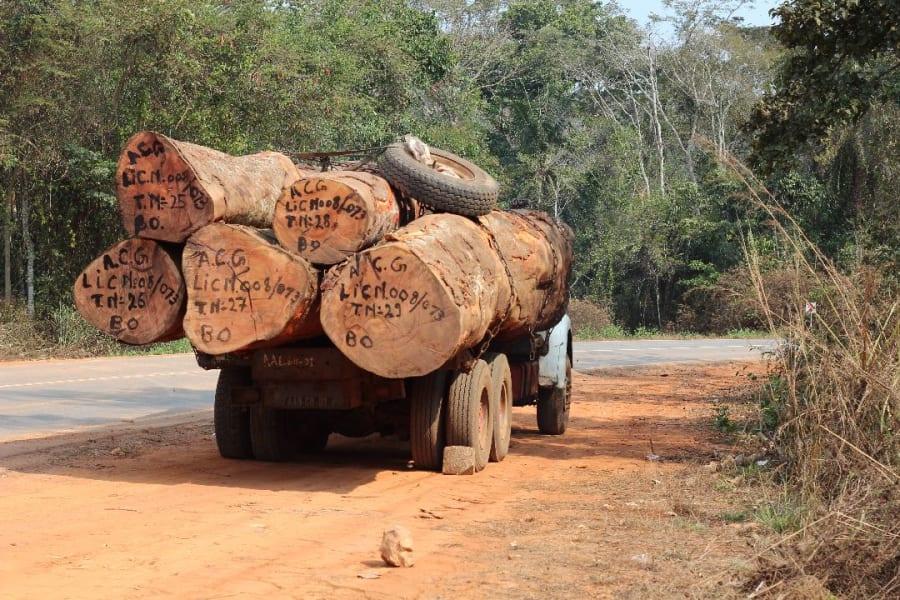 Timber logging truck in Angolan Escarpment_Simon Bearder