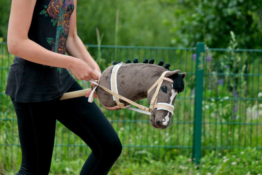 hobbyhorse 1
