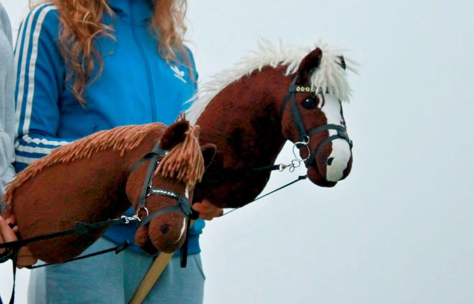 hobbyhorse 10