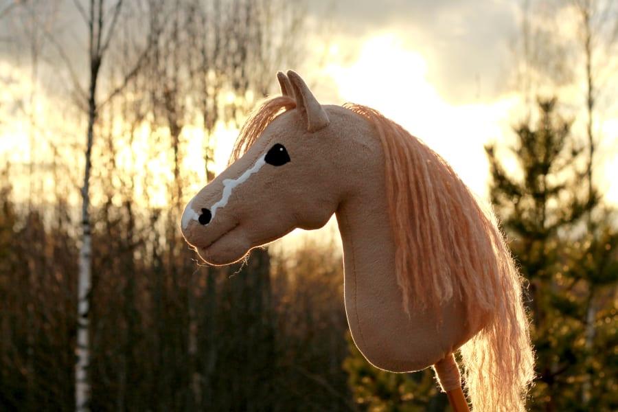 hobbyhorse 12