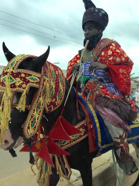Festive Horse at Durbar Festival