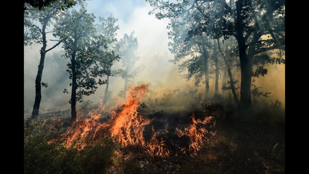 04 france wildfire 0726