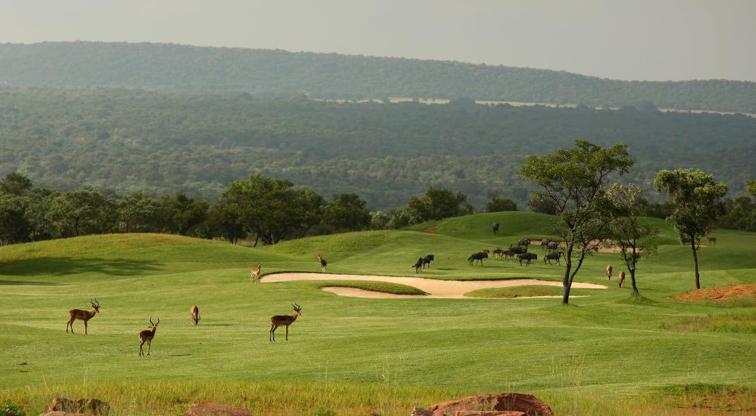 Legend Golf Course 6