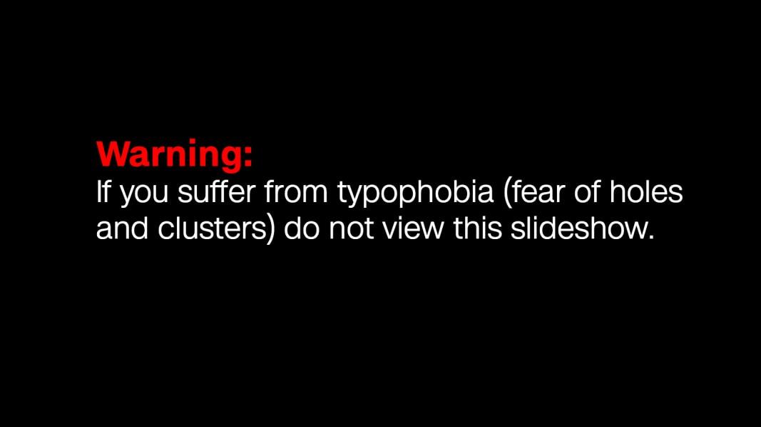 warning-typophobia-slate