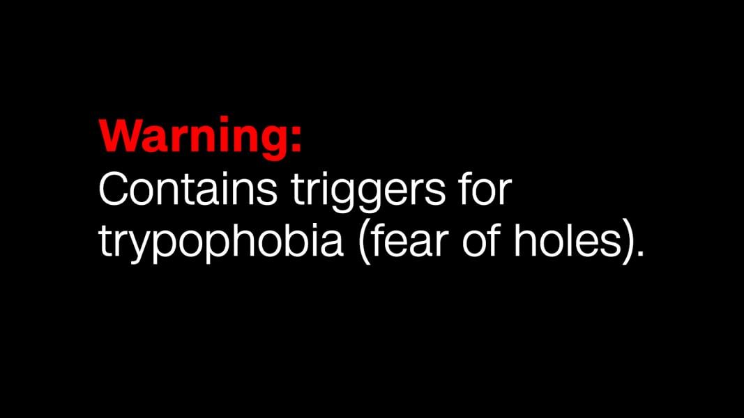 warning-tryophobia
