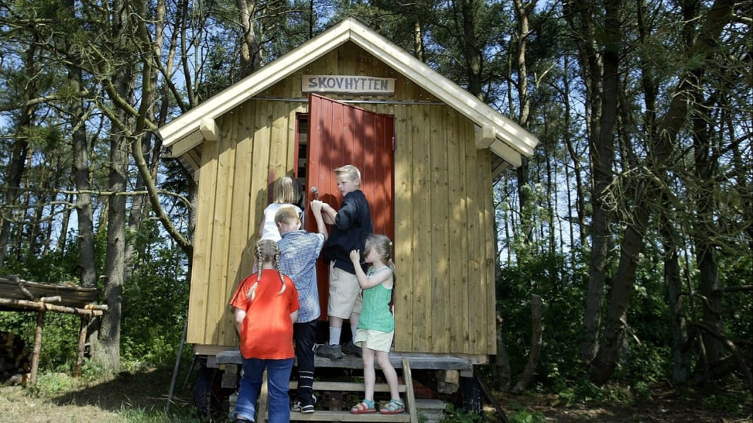 denmark forest school