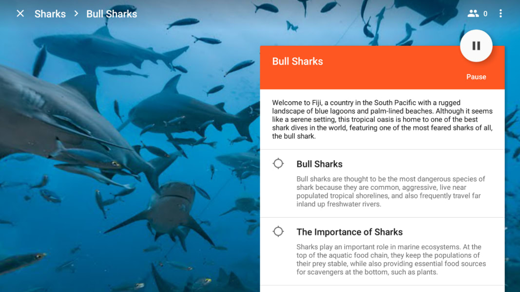google expeditions sharks