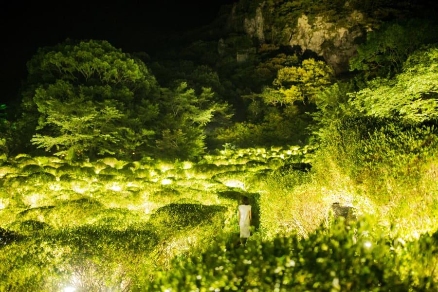teamlab japan light valley