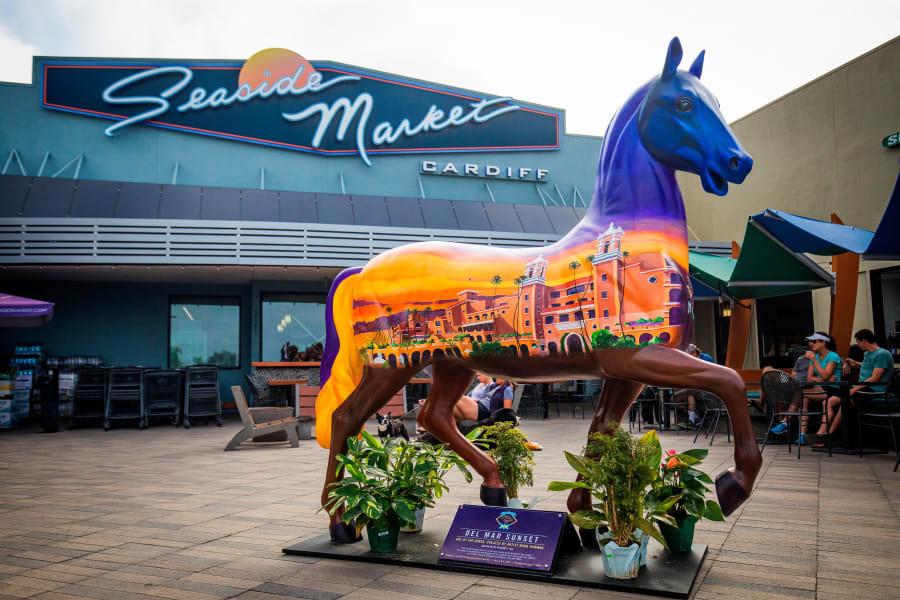 Torrie horse del mar sunset