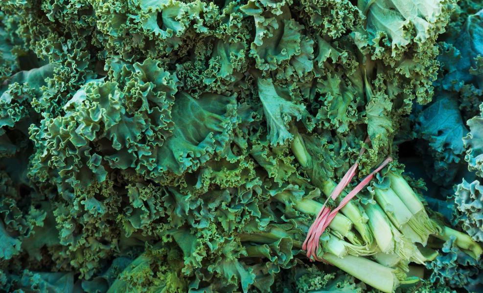 farmers market kale