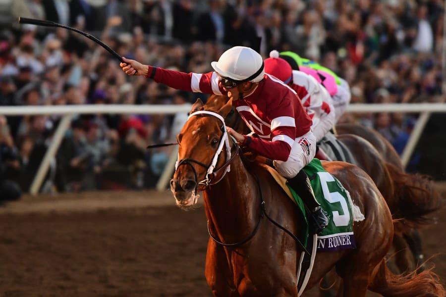 Gun Runner Pegasus World Cup richest horse race